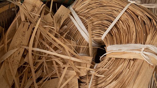 桂竹籜葉攤平後會整捆燒磺來染白及驅蟲