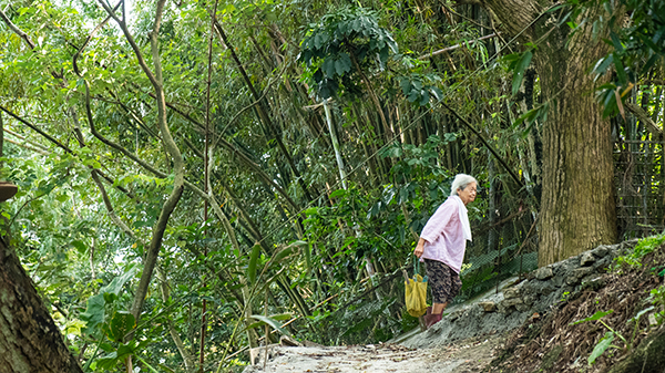直到現在李秦教女士還是這樣隻身進山砍需要的竹材